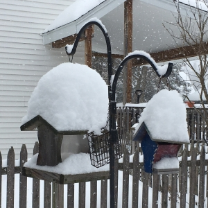 bird feeders piled high with snow