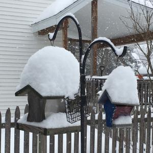 bird feeders piled high with snow